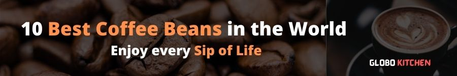 Best Coffee Bean and Leaf