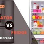 Refrigerator vs Fridge